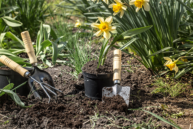 Maryland Gardener, Garden Girls